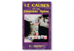 12 Causes of an Unstable Spine